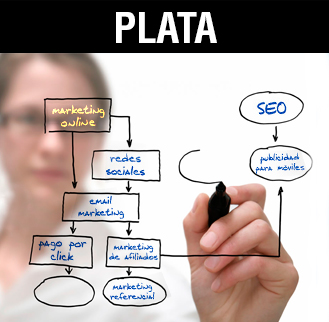 Seo y posicionamiento Plata Marketing on line Madrid
