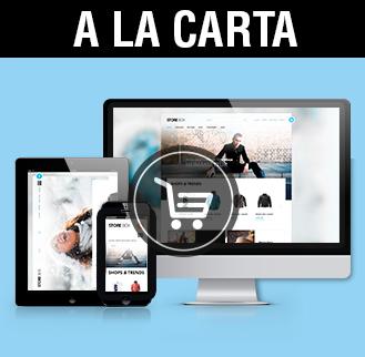 Diseño de tiendas online a medida diseño tiendas online a la carta Albacete