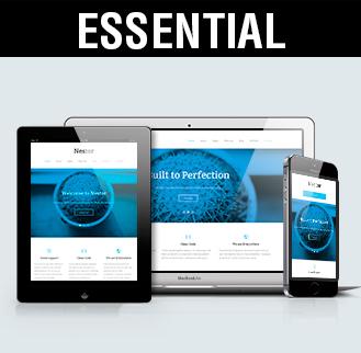 Diseño web y posicionamiento seo, diseño páginas web essential. Imagen