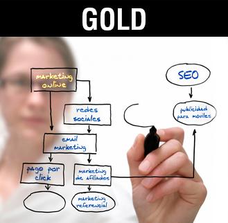Seo y posicionamiento Gold