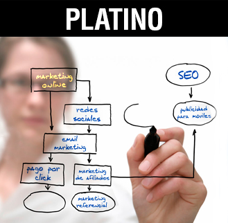 Seo y posicionamiento platino