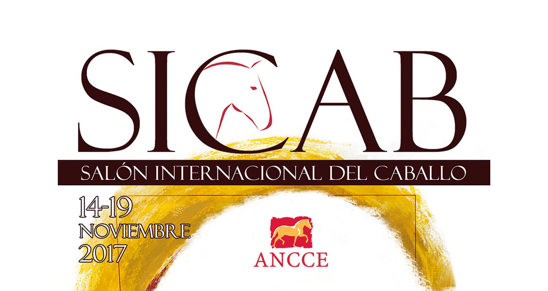 Diseño grafico Albacete, diseño grafico tarjetas pvc SICAB 2017 ANCCE