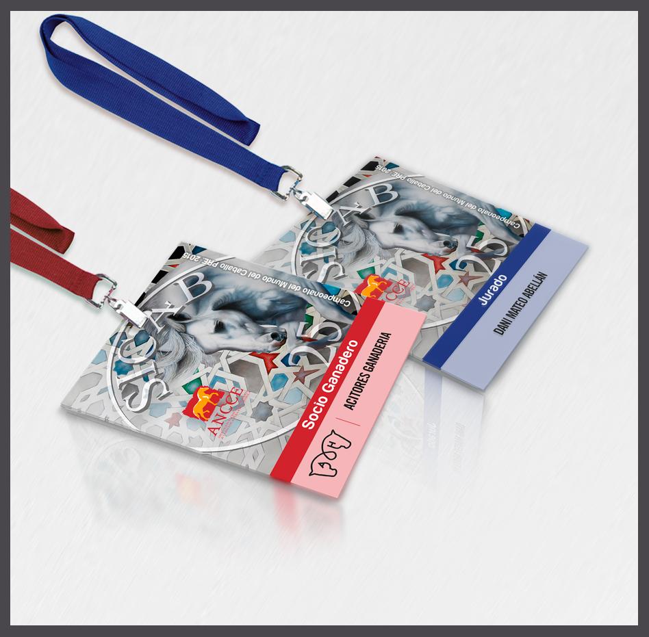Tarjetas de identificación, tarjetas de acreditación, tarjetas para acreditaciones, tarjetas plásticas para acreditación