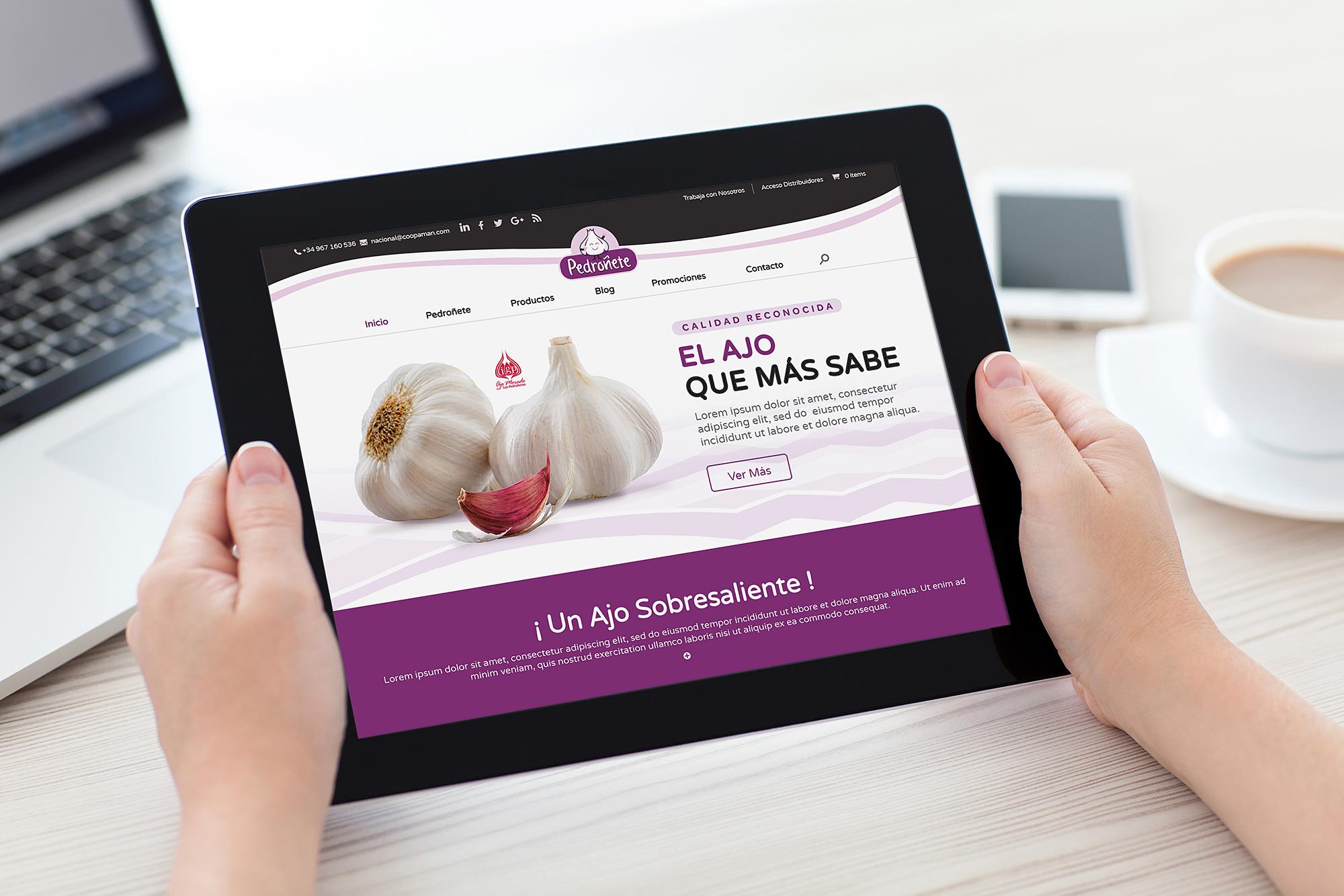 Gestión de Redes Sociales, Diseño gráfico Albacete, redes sociales y SEO, tienda online Pedroñete