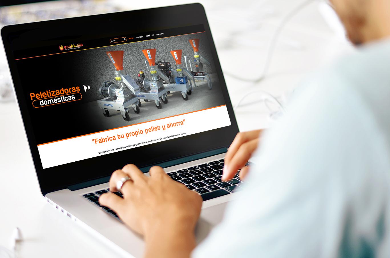 Diseño web Albacete, SEO y posicionamiento página web Ecofricalia