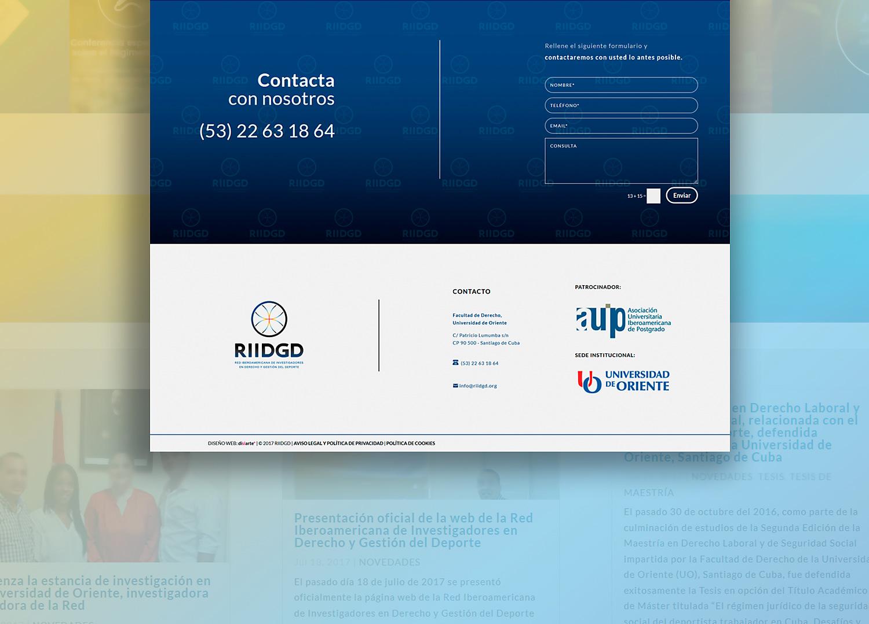 Diseño web Albacete, Diseño de web corporativa, diseño de logotipo para RIIDGD