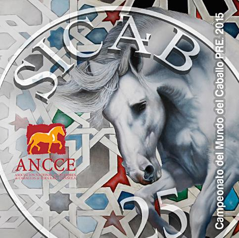 Diseño grafico Albacete, diseño grafico tarjetas pvc SICAB 2015