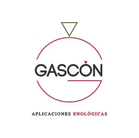 Diseño web albacete, Diseño grafico Albacete, branding Albacete Gascón Aplicaciones Enológicas